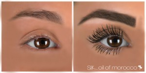SilkOilofMorocco-FibreBrowEnhancer-Before&After-Giorgia [WORKING]