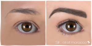 SilkOilofMorocco-FibreBrowEnhancer-Before&After-Jade [WORKING]