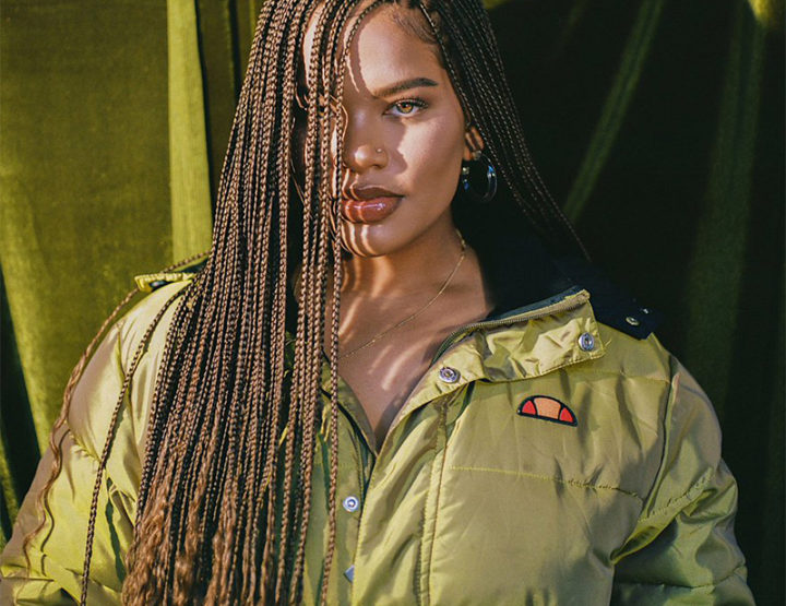 Alissa Ashley: is $700 too much for box braids?